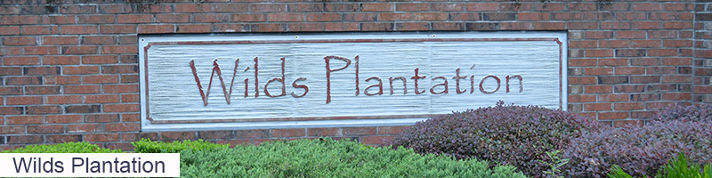 Wilds_Plantation_Guide